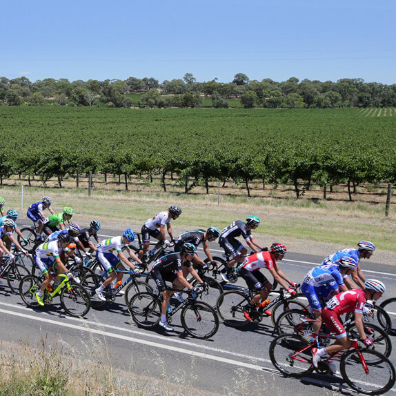 Barossa Valley Stage 1