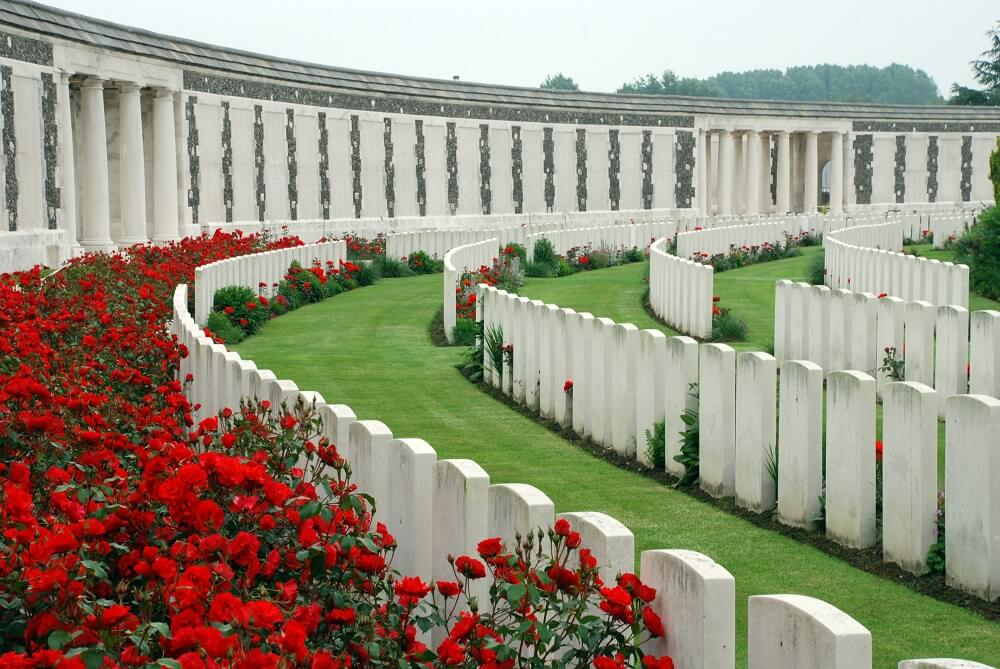 Flanders Fields scattered with red poppies